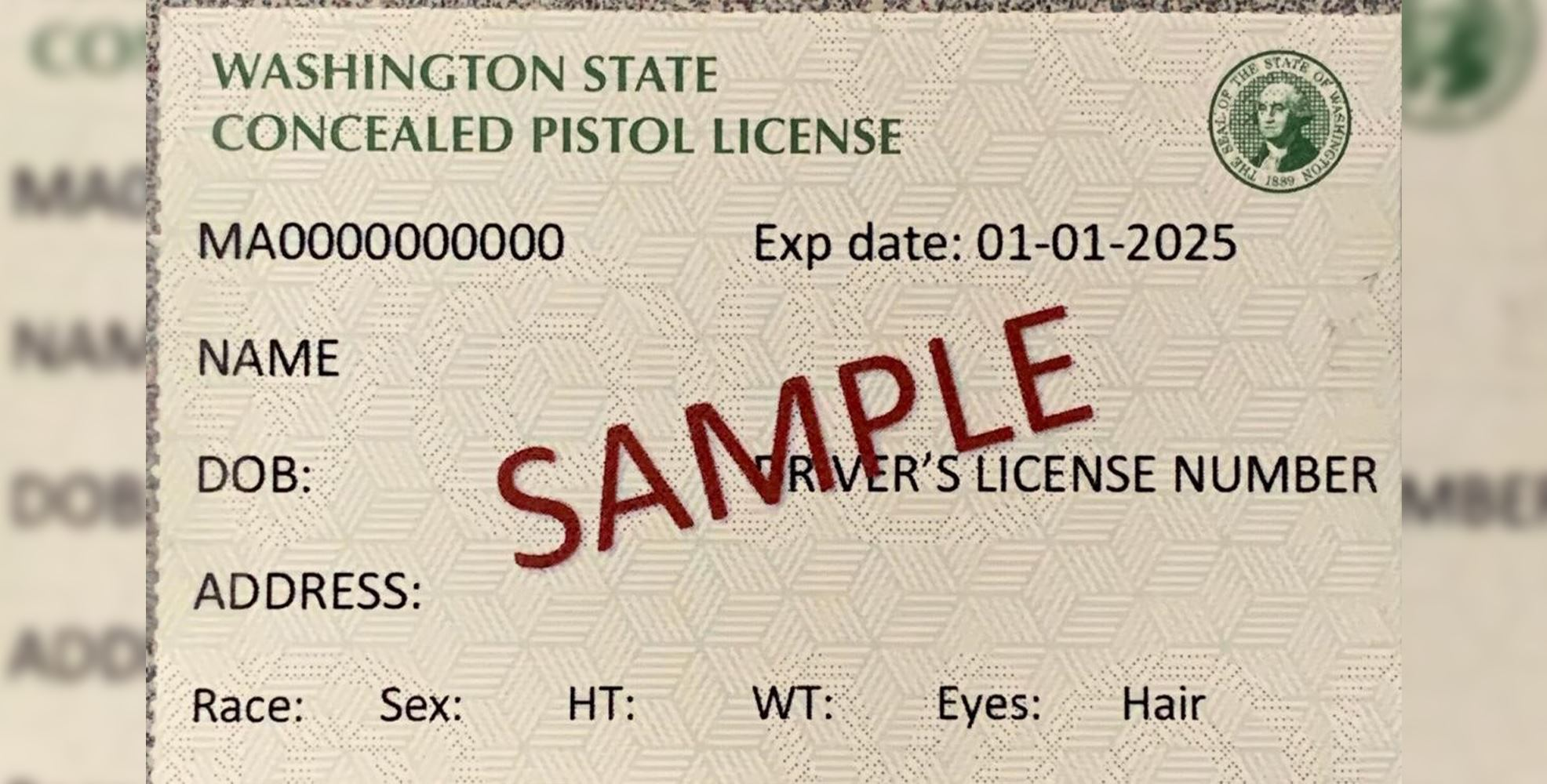 A sample concealed pistol license