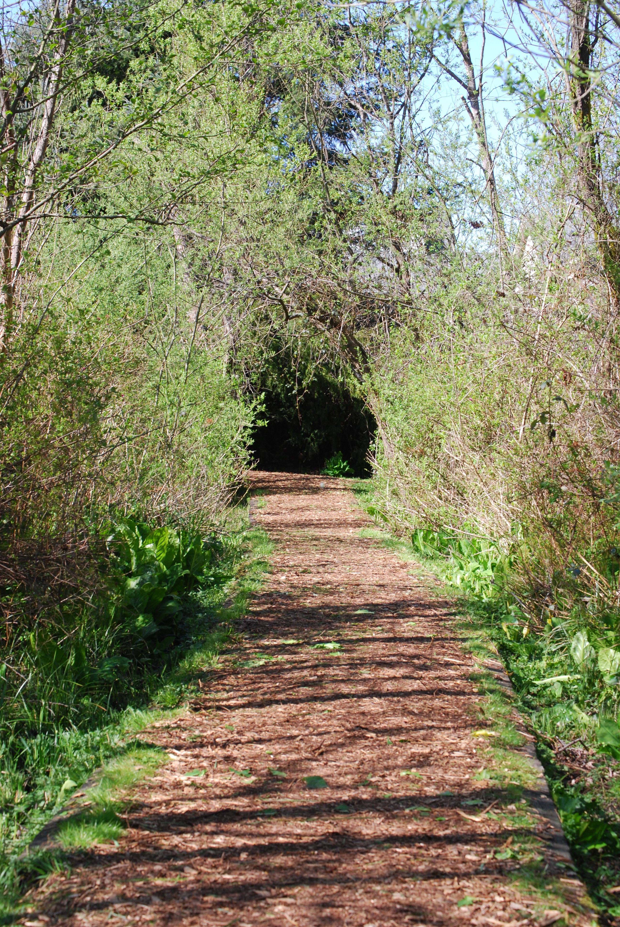 Jennings Trail